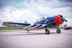 Noorduyn Harvard Mk IIB (1941) (Sameli) Tags: aviation old plane airplane aircraft north american noorduyn harvard mk iib 1941 checker tail kau efka kauhava suomi finland