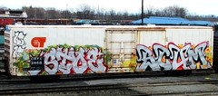 STOE - SCUM (timetomakethepasta) Tags: stoe stoer scum cdc freight train graffiti art cryx cryotrans