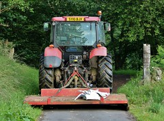 been learning............... (Suzie Noble) Tags: tractor grass field cows cattle strathglass struy
