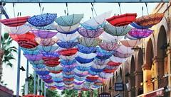 PARAGUAS (ErickLlanosR) Tags: paraguas valencia marinador umbrella colours