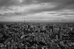 Views of Tokyo #1 (Woodenship) Tags: from skydeck roppongi hills tokyo japan carl zeiss biogon t 235 zm sony a7 monochrome blackandwhite bw black white