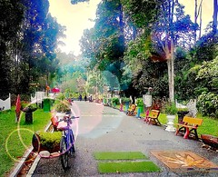 http://www.tbnsa.gov.my/en/home2 #travel #holiday #outdoor #green #Asia #trip #garden #Malaysia #selangor #shahalam #bukitcahaya # # # # # # # # (soonlung81) Tags: travel holiday outdoor green asia trip garden malaysia selangor shahalam bukitcahaya         bicycle