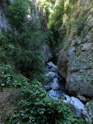 In the Gorges de Saint-Jaume