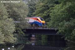 222015 passes Belper River Gardens, 15/8/16 (hurricanemk1c) Tags: railways railway train trains 2016 emt eastmidlandstrains class222 class2220 meridian bombardier belper 222015 1c42 1149sheffieldlondonstpancras