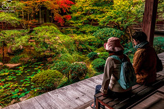Where else? (BeNowMeHere) Tags: ifttt 500px trip colour fall fallcolours japan kyoto landscape nature temple where autumn color colorful colourful else foliage garden japanese serenity travel