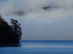 Lago Calafqun (Mono Andes) Tags: chile chilecentral lagocalafqun niebla regindelosros