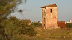 Torre Rossa (al tramonto) (Nicola Armari) Tags: salina comaccio ferrara parco delta po