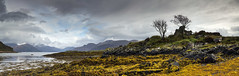 Trees and a rocky outcrop (Katybun of Beverley) Tags: trees rockyoutcrop scotland landscape rocks clouds moodysky moodyclouds rainclouds lochhourn isleofskye scenery scene scenic