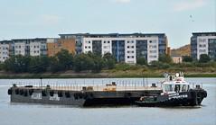 Haven Supporter + Wilcarry 1711 (1) @ Gallions Reach 12-09-16 (AJBC_1) Tags: london havensupporter dlrblog ajc newham northwoolwich londonboroughofnewham eastlondon england unitedkingdom uk ship boat vessel marineengineering nikond3200 tug tugboat collinswateragelighterage gallionspoint pontoon stantug1205 damen damenshipyardsgroup williamsshipping wilcarry1711 riverthames gallionsreach