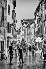 Streetphotography Rovinj Rovigno City Life Streetphoto_bw Istria Black And White Walking Around The City  Bw_collection Urbanphotography Urban Landscape Nsnfotografie Blackandwhite Street Photography Architecture Building Exterior Built Structure City Wal (cyberdee) Tags: streetphotography rovinj rovigno citylife streetphotobw istria blackandwhite walkingaroundthecity bwcollection urbanphotography urbanlandscape nsnfotografie architecture buildingexterior builtstructure city walking person men lifestyles largegroupofpeople residentialbuilding