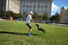 DSC06161 (liverpix) Tags: cleo dog performing anthonywalsh photowalk 500px liverpool pierhead liverbuilding ballerina ballet