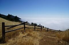 Mount Tamalpais: Rock Spring to Stinson Beach Hike (5) (Planet Q) Tags: mttam marinheadlands