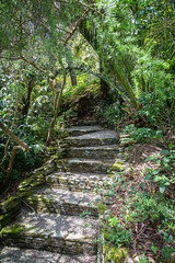 Shadow path (John2am.) Tags: view southwest plants pots england lamorranhousegardens shade stmawes cornwall greenery garden canon5dmk3 steps outdoorsoutside uk sea