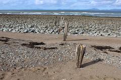 Beach at Llandanwg (1) (Walruscharmer) Tags: beach groynes pebbles lleynpeninsula cardiganbay irishsea coastalscene merioneth gwynedd wales