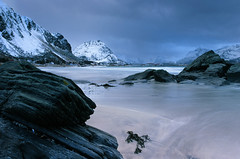 Rambergstranda - Velvia 50 exp* (magnus.joensson) Tags: norway norwegian scandinavia nikon nikonfe zeiss distagon 28mm zf2 lofoten velvia fuji 50 exp2006 e6