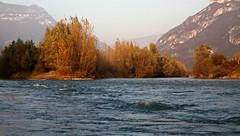 The fall colors along the Adige river (ab.130722jvkz) Tags: italy veneto trentino rivers adigevalley alps easternalps