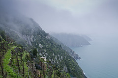 Misty cliffs (Lourens SA) Tags: sea italy mist storm nature beautiful rain weather landscape nikon hike cliffs terre lush cinque mediterranian d7000