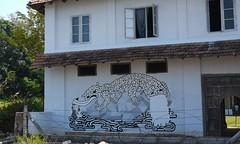 P1120652 (co choi) Tags: india art kerala biennale fortcochin