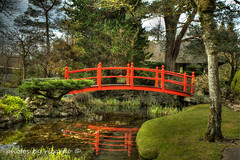 Japanese gardens (Photos by Ricardo) Tags: horses footbridge japanesegardens stallion kildare foal redbridge curragh thenationalstud
