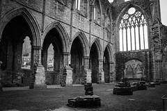 "Tintern Abbey • <a style=""font-size:0.8em;"" href=""http://www.flickr.com/photos/32236014@N07/8636154034/"" target=""_blank"">View on Flickr</a>"