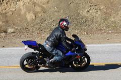 Suzuki GSX-R600 (Have Fun SVO) Tags: blue bike skull highway snake helmet 600 bones motorcycle suzuki mulholland spotting gsxr rockstore
