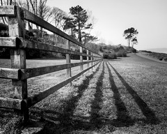 Bangor fence (Andre Delhaye) Tags: uk trees black beautiful grass fence landscape bay blackwhite agua fuji compo andre fujifilm 1855mm cinza fujinon ulster blackandwhitephotography andre blackwhitephotography blackandwhitephotographs blackandwhitepictures delhaye blackandwhitephotographer andredelhaye andredelhayecom blackandwhitephotographypictures blackandwhitephotographers wwwandredelhayecom wwwandredelhayenet andredelhayenet delhayeandre andredelhayephotographer fujifilmxe1 fujinonxf1855mmf284rlmois