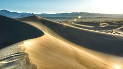 Mesquite Dunes_171-Mesquite Dunes (digital-dreams) Tags: ca unitedstates desert dunes deathvalley hdr photomatixpro mesquitedunes bwcpl nikond800 niksoftwaretonalcontrast nikkor28300mm johnsdigitaldreamscom noisewarepro5