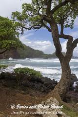Kaihalulu Red Sand Beach on the Road to Hana JN074064 (JaniceNolan_braud) Tags: ocean beach hawaii dangerous maui pacificocean tropical roadtohana roughwater redsandbeach roughocean kaihaluluredsandbeach