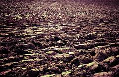 DSC_0236 - Work the land (SWJuk) Tags: uk england field nikon earth land lightroom furrows arnside ploughed d90 2013 cumbris nikond90 myfreecopyright swjuk apr2013