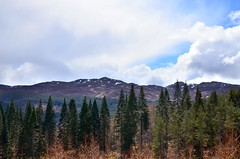 Blue Skies Breaking Through (monkeyiron) Tags: trees cloud tree clouds forest scotland view perthshire lochtummel