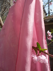 (milkweed seed) Tags: pink flowers spring peach silk lac blooms naturaldye peachtreeblossoms