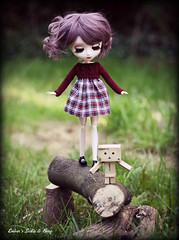 Lesson 1 (pure_embers) Tags: new uk red brown colour cute girl garden walking fun eyes doll dolls dress sweet stock adorable sadie mini lips planning wig modified tightrope pullip lesson luts pure jun embers boxy rosy danbo boxboy obitsu rosybrown stica cangaway pureembers