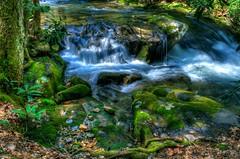 Noontootla Creek Waterfall (ugadawg1864) Tags: adobe aperture color creek d5100 georgia hdr landscape moss nature nikon noontootla photomatix photoshopelements rocks waterfall water