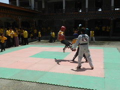 "Taekwondo • <a style=""font-size:0.8em;"" href=""http://www.flickr.com/photos/76929546@N08/8713546532/"" target=""_blank"">View on Flickr</a>"