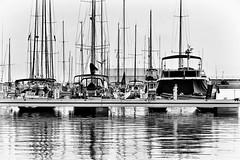 Glistening too (Fnikos) Tags: port light sea water waterfront boat sky skyline serene vehicle blackandwhite monochrome outdoor