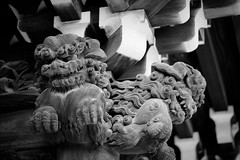 105mm f/1.4E - Mono (H.H. Mahal Alysheba) Tags: nikon d800 afs nikkor 105mmf14 monochrome bokeh dof shibamata temple