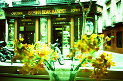 Brown Bear Bakery (srgpicker) Tags: 35mm agfa agfaphoto bakery crossprocessed ct film iso100 madrid mjuii olympus orange precisa xpro xprocess μmjuii centrofuji cafeteria coffee coffeeshop flowers flores panaderia pasteleria