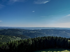 View from Schomberg tower, Wildewiese, Germany (jonasschmidt1909) Tags: wildewiese landscape germany sauerland great view sunny day olympus em10 forest