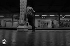 La patience (TLY photographie) Tags: paris parisian parisien paristourisme patient patience train trainstation sncf ratp metro mtro wagon tourism touriste tourist tourisme urbex visit architecture summer downtown france photography photo classic