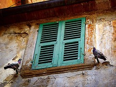 Do you think birds are sometimes spirits? This matched pair wanted to pose together and were unflappable, not at all phased by passing tourists. Perhaps they were a couple who lived on the other side of that window, long long ago... (momfluential) Tags: do you think birds sometimes spirits this matched pair wanted pose together were unflappable all phased by passing tourists perhaps they couple who lived other side that window long ago