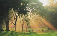 Sun Salutation-晨光下的瑜伽 (Daniel Q Huang) Tags: sun rays sparkles tree mists sunrise