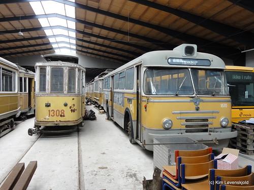 Museum tram & buses