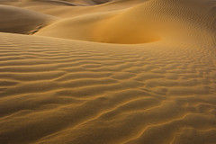 Skin of Mother Nature (Mustafa Kasapoglu) Tags: sands texture skin lady mothernature desert surface reflections middleeast uae dubai d810