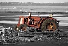 David Brown Tractor on Waiinu Beach (possumgirl2) Tags: selectivecolour dslr samsunggx20 davidbrowntractors davidbrown tractors coastalboattractors boattractors