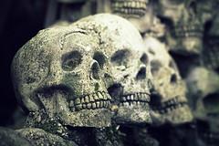 Skulls. (Joseph Skompski) Tags: crownsvillemd crownsville maryland renaissance marylandrenaissancefestival renaissancefestival renaissancefair skulls skull macabre noir