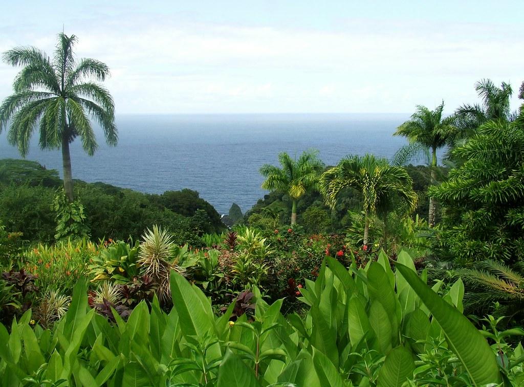 Take an Epic Tour Through the Garden of Eden in Maui! Check out the ...