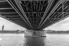 Under the Bridge (ivan.neshovski) Tags: bridge architecture bnw blackandwhite metal construction river germany cologne europe root rootphotography sony sonyalpha sonya6000 ilce6000 sonylens sonyshots sonyimages 1650 perspective