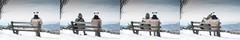 selfportrait: 04/001 - Meine Lieben - Feldberg-Liebe (tobi_digital) Tags: schnee portrait snow self ego 50mm hug panda hessen arm bank portrt april selbstportrait blick mtze feldberg selbst umarmung selbstportrt delighted fernweh freehug d700 meinelieben tobidigital