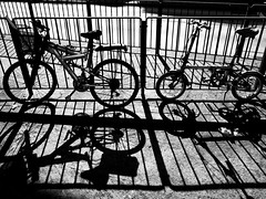 Lines (SpaceMars) Tags: city shadow urban lines bicycle hongkong parking 28mm wideangle  kowloon