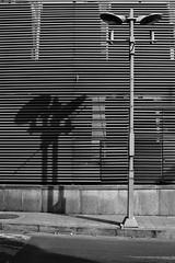 distorted (itawtitaw) Tags: street white black building lines architecture contrast blackwhite shadows korea seoul southkorea sigma30mm14 canoneos60d